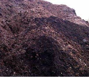 composts & soil