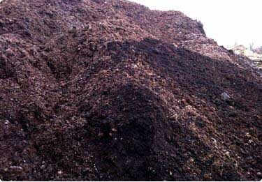 composts & soil