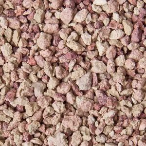 Staffordshire Pink